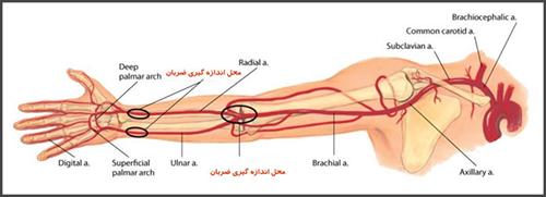خدمات پرستاری در منزل | علائم فشار خون بالا