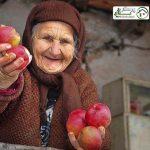 مراقبت از سالمند خانم سالم ، تهران پارس