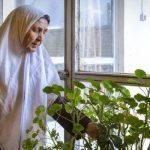 مراقبت از سالمند سالم در جنت آباد مرکزی