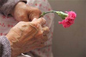 مراقبت از سالمند 90ساله ، جُردن