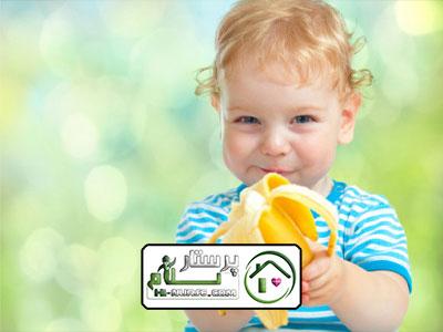 کمک در امور منزل و مراقبت از کودک ، پاسداران
